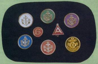 Junior Section Badges